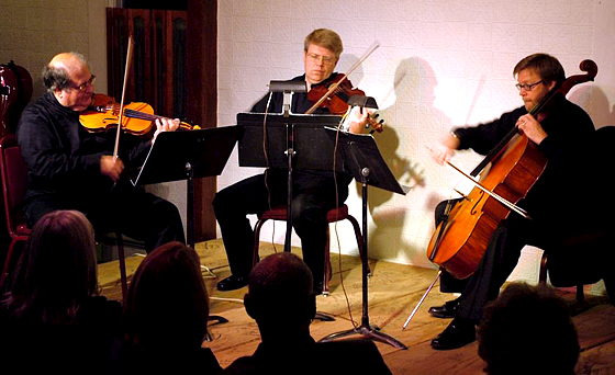 The Langroise Trio at the Martin